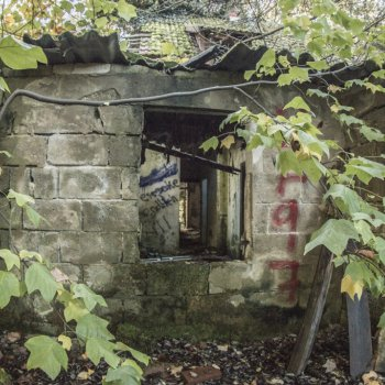 Abandoned Forest House 5