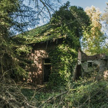 Abandoned Forest House 8